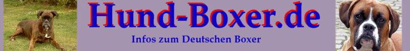 Deutscher Boxer Infos zum Hund